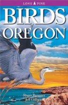 Oregon Coast Birds